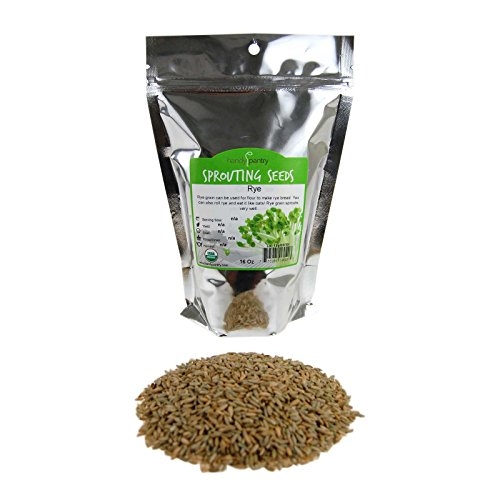 Organic Rye Grain Seeds - 1 Lb Re-Sealable Bag - Rye Seed / Grains for Flour, Bread, Sprouting, Rye Grass & More