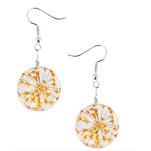 Darkey Wang Woman Fashion Dried Flowers Glass Hemisphere Time Gem 20mm Earrings(Orange)
