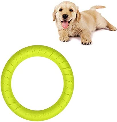 Small Dog Toys Ring Water Floating Outdoor Fitness Flying Discs Tug of War Interactive Training Ring for Puppy to Small Dogs 8 inch