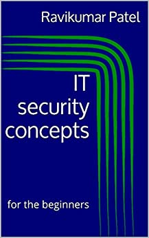 Image result for it security concepts