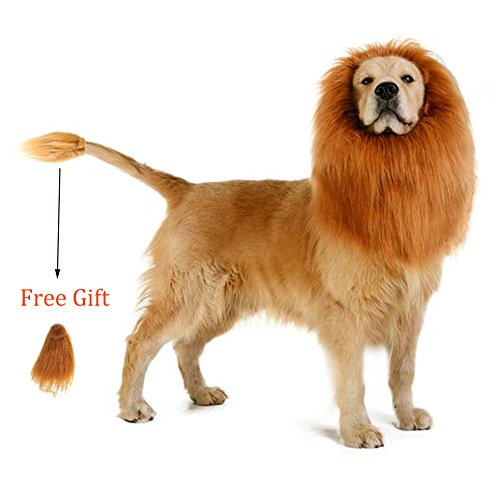 Furpaw Halloween Lion Mane for Dog | Lion Costume/ Wig/ Hat/ Hair with Free Gift [Lion Tail] (Homemade Dog Halloween Costumes Ideas)
