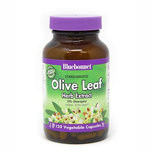 BlueBonnet Olive Leaf Extract Supplement, 120 Count