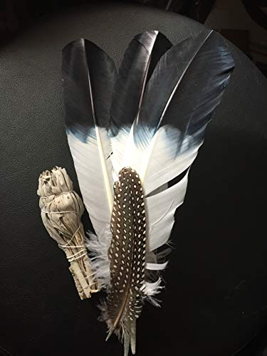 Hand Painted Eagle Feather (Goose) and Smudging Stick