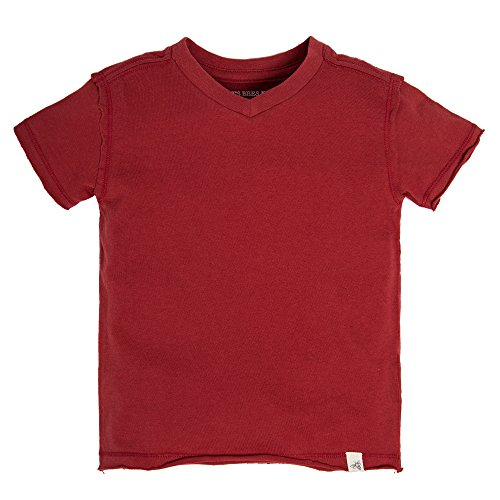 Burt's Bees Baby Baby Organic Short Sleeve Reverse Seam High V Tee Shirt, Red Barn, 24 (Baby Short Sleeve T-shirt)