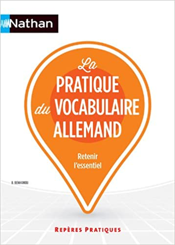 Lire un La pratique du vocabulaire allemand pdf