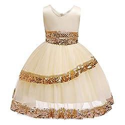 Children's Sequins Gauze Skirts Princess Dresses