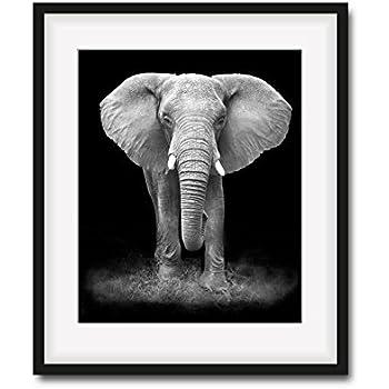 Amazon.com: Genius Décor Black and White Elephant Picture