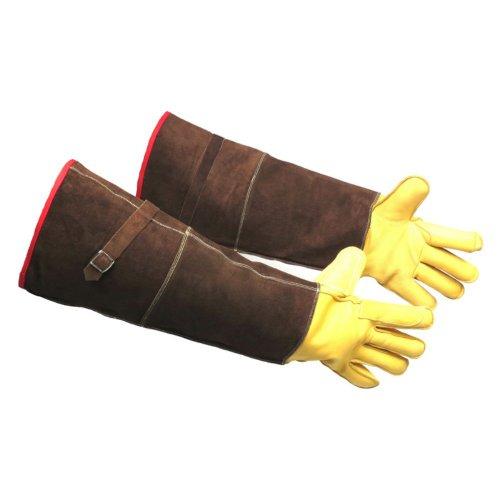 Guantlet Gloves - 6