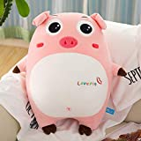 Ocamo 1PCS 40CM/50CM/65CM Cartoon Pig Toy Guard Technology Plush Dog Toy Piggy Pillow Big Eyes Cute 40CM