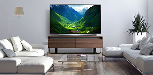 LG OLED55C8PUA 55-Inch 4K Ultra HD Smart OLED TV (2018 Model)