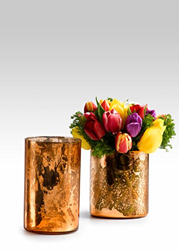 Antique Copper Mercury Glass Cylinders, Set of 2 by Serene Spaces Living
