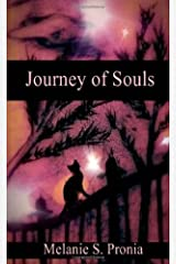 Journey of Souls Paperback