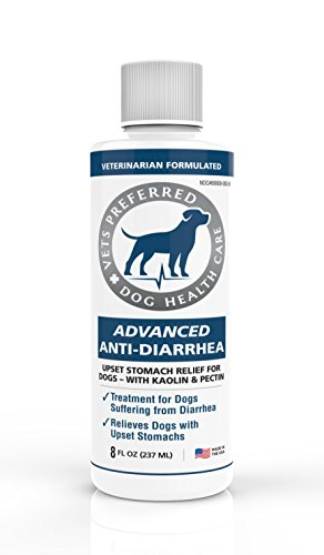Vets Preferred Advanced Anti Diarrhea Liquid | Veterinarian-Grade Anti Diarrhea Dogs Solution | Fast Relief for Dog Diarrhea, Upset Stomach, Cramping, and Discomfort with Kaolin and Pectin (8 oz.)