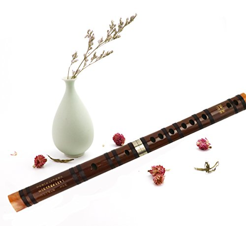 Instrument Chinese Music (Flute Etudes,Chinese Bamboo Flute Music Fife Flute and Modern Alto Flute with Wholesale Bulk Plastic Champagne Flutes,Traditional Handmade Chinese Musical Instrument (F))