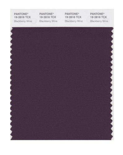 Wine Make Blackberry (PANTONE SMART 19-2816X Color Swatch Card, Blackberry Wine)