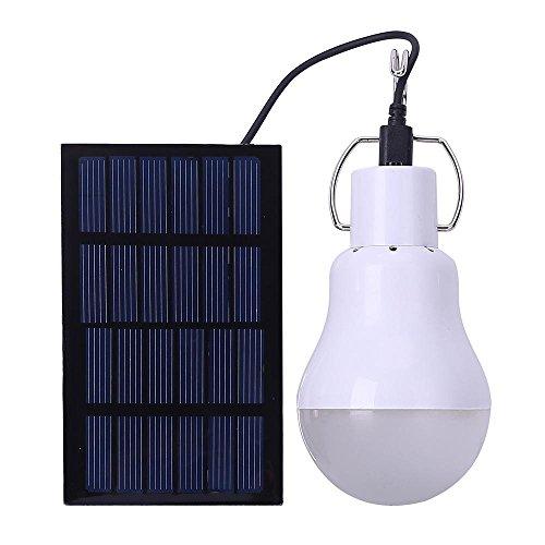 Chicken Coop Solar Powered Lighting - 7