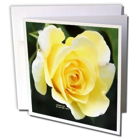 Lee Hiller Designs Roses - Pale Yellow Rose - 6 Greeting Cards with envelopes (gc_5029_1) ()
