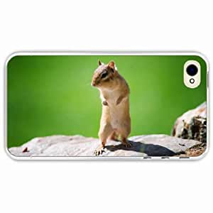 iPhone 4 4S Black Hardshell Case squirrel animal Transparent Desin Images Protector Back Cover