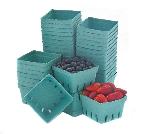 JA Kitchens Green Molded Pulp Fiber Berry /...