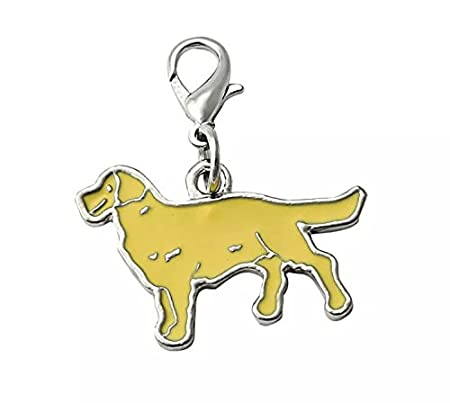 OHA-PET Golden Labrador/Golden Retriever Charm Llavero en ...