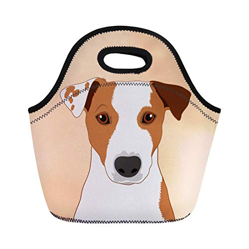 Deeoor Neoprene Lunch Tote Bag Colorful Face Jack Russell Terrier the Buddy Dog Head Reusable Cooler Bags Insulated Thermal Picnic Handbag for Travel,School,Outdoors, Work