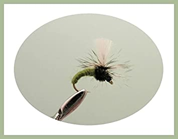 6 Black & 6 Olive Emerger Trout Flies Mixed 10/12/14 For Fly Fishing 12 Pack