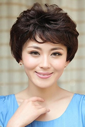 Wigs For Older Women (Generic Small_Su_Tien_older wigs wigs_ short hair wigs short hair wigs _temperament_mother_ head hair Headdress short_curly_Emulation)