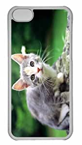 Customized iphone 5C PC Transparent Case - White And Gray Kitten Personalized Cover by lolosakes