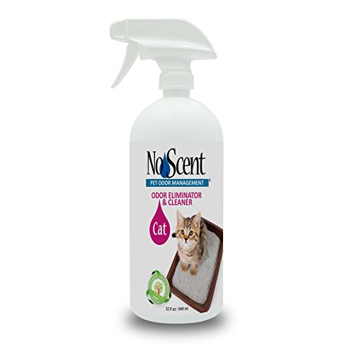 No Scent Cat - Professional Pet Urine Feces Odor Eliminator Cleaner - Safe All Natural Probiotic & Enzyme Formula Smell Remover Litter Box Hardwood Carpet Floors Upholstery (32 oz)