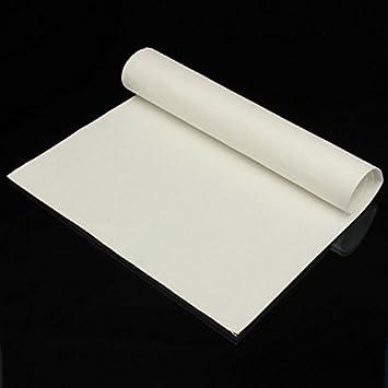 Rosa Lagarto cerámica cable de aislamiento manta papel no amianto para madera estufas 610 x 300 x 1 mm: Amazon.es: Hogar