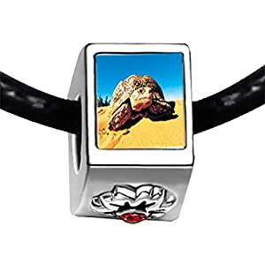 Chicforest Silver Plated Desert Turtle Photo Red Siam Crystal January Birthstone Flower Charm Beads Fit Pandora Chamilia Biagi Charm Bracelet