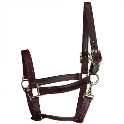 Perri's Brand Cheap Sale Venue Horse Track Quantity limited Style Halter Leather Turnout