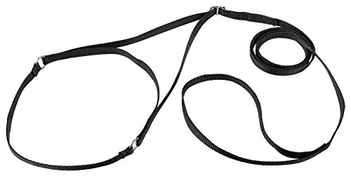 Country Brook Design Nylon Martingale Dog Show Lead - Black
