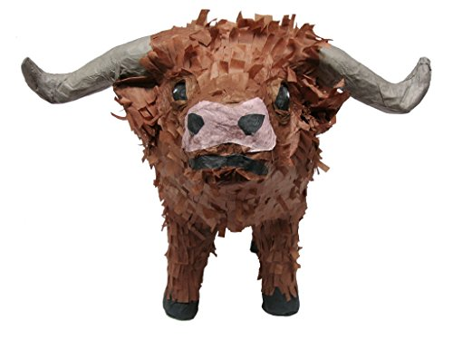 Pinatas Texas Longhorn Pinata, Party Game and Centerpiece Decoration for Western Party