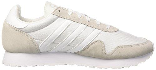 adidas Herren Haven Gymnastikschuhe Weiß (Footwear White/Footwear White/Vintage White)