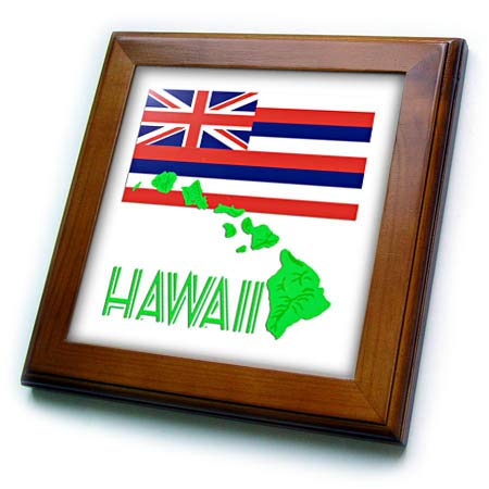 3dRose Macdonald Creative Studios - Hawaii - The Flag of The State of Hawaii with a Green map of The Islands. - 8x8 Framed Tile (ft_295568_1)