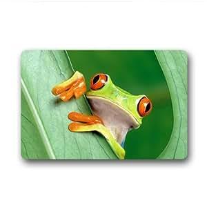 """Custom Frog Doormat Outdoor Indoor 18""""x30"""" about 46cmx76cm"""