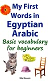 My First Words in Egyptian Arabic: Basic vocabulary for beginners (Learn Egyptian Arabic Book 1)