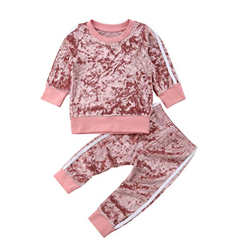 Toddler Baby Girls Velvet Clothes Outfit Set Long Sleeve Top and Pants 2pcs Outfits Fall Clothes (2-3T, Pink)