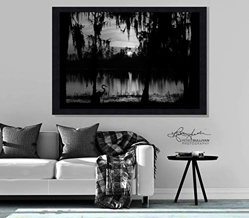 Southern Nature Photography/CANVAS or METAL/Ready-to-Hang Fine Art Photo/Lake with Bird and Spanish Moss/Black and White/Small to Extra Large Wall Decor / 7