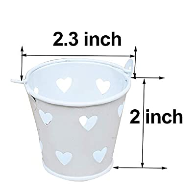 Awtlife 30 pcs Mini Metal Bucket Candy Favours Box Pail Wedding Party Gift: Toys & Games
