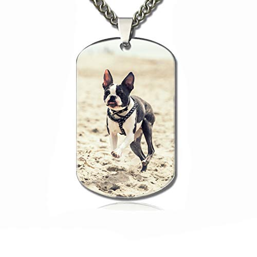 PANQJN Runing On Beach Personalized Pet Necklace ID Tags for Dogs & Cats, Includes Protect Tag & Single-Sided Printing