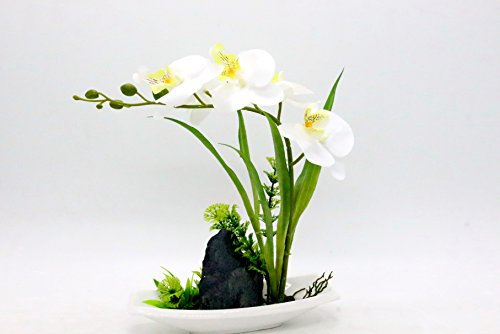 Leeman Artificial Lifelike Real Touch Flowers Arrangement Phalaenopsis Bonsai Orchid Miniascape Home Decoration Holiday Gift (White 545)
