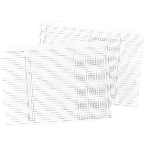 WLJN1D - Wilson Jones Balance Ledger Columnar Sheet