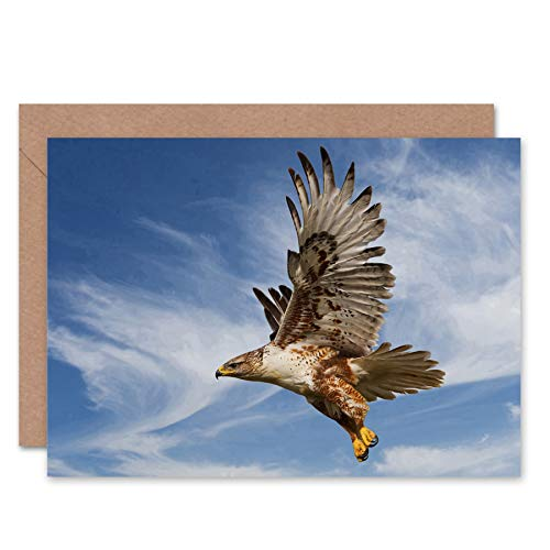 Price comparison product image Wee Blue Coo New FERRUGINOUS Hawk Prey Hunting Flight Bird Bday Blank Greetings Card CL1075