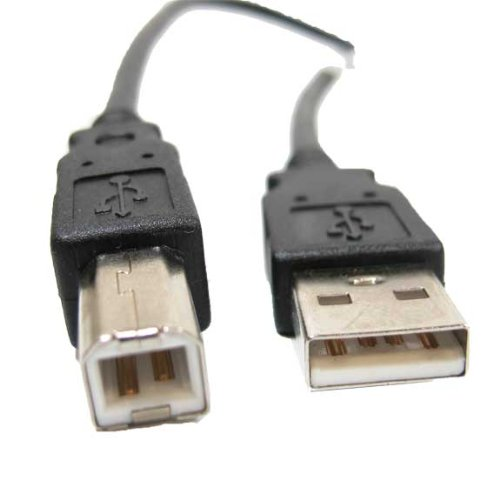USB 2.0 Cable, Type A Male to B Male (0.5 Feet)