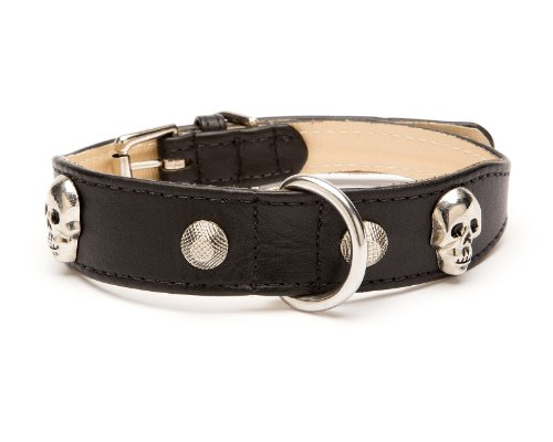 Large Skull Rivet Tapered Dog Collar, Small Size 9-11, Black