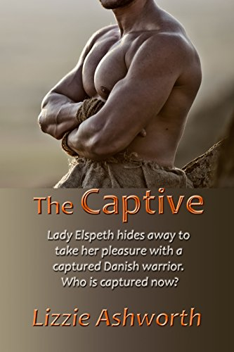The Captive: A Short Viking Romance