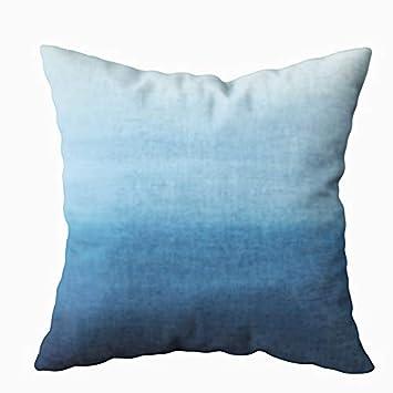 Amazon.com: Funda de almohada oculta TOMWISH con cremallera ...