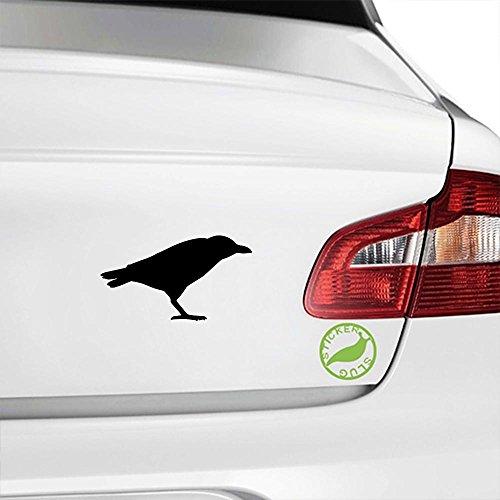 Raven Bird Decal Sticker (black, 5 inch) (Decals Wall 5 Inch Birds)